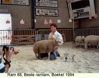 Ram 88 - 1994