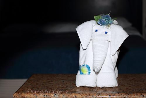 Elephants In Aruba by Megan Lorenz