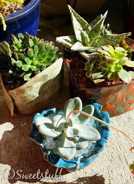 I made these pots!!!!