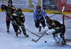 stick and ball games(0.0), roller hockey(0.0), roller in-line hockey(0.0), ball game(0.0), bandy(0.0), sports(1.0), team sport(1.0), ice hockey(1.0), hockey(1.0), player(1.0), goaltender(1.0), defenseman(1.0), ice hockey position(1.0), college ice hockey(1.0), athlete(1.0), team(1.0),