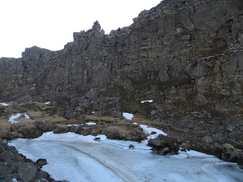 the north american plate