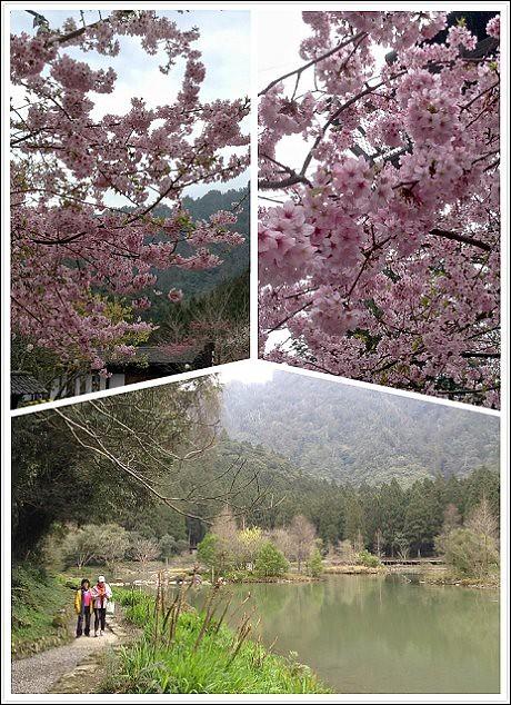 明池山莊2