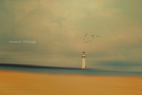 ~The little Light-house ~
