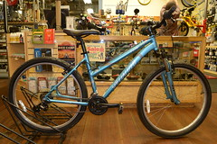 "17"" Specialized HR XC $385"