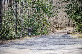 Cataloochee Valley Road's End