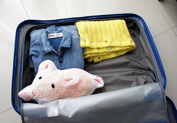 新秀麗行李箱20