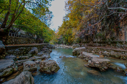 lebanon kartaba qartaba jbeil river water nature landscape green nikon wide angle trees janne creek stream forest lake