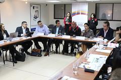 04/24/2017 - 13:14 - Quito, 24 de abril de 2017 (Andes).- Rocío González esposa del presidente electo Lenín Moeno, participó en una reunión con representantes de Nicaragua y El Salvador  para tratar sobre programas para discapacitados. ANDES/Micaela Ayala V.