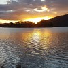 The lovely lake :heart_eyes::heart_eyes::heart_eyes: #bytetime #art #golden #cbr #sunset #creativity #photography #nature #photowalking #watersofthepast #dailygratitude #inspiration #instadaily #instagood #dailywalk #creativity #artist  #traceybenson #pho