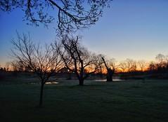 Misty pre-dawn