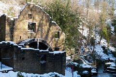 Winter 2013 (Jesmond Dene)  (16)