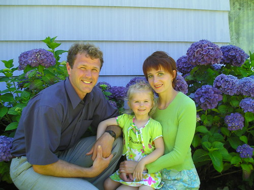 family farmed hydrangeas
