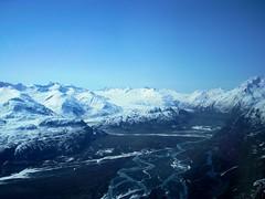 Mountain Palmer 5
