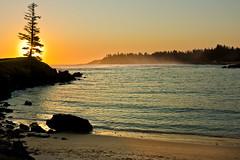 emily bay sunset