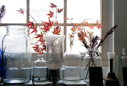 kris-flowers11