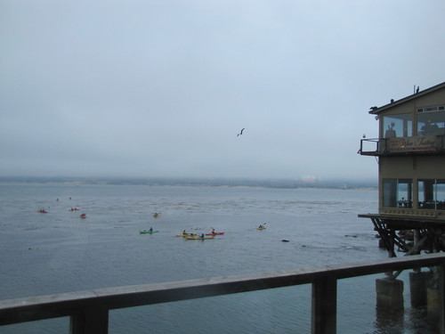 View of kayakers on Monterey Bay