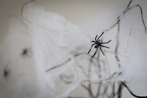 20121028_halloweendecorations_001