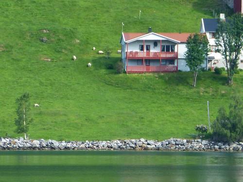 Norwegen Tag4c