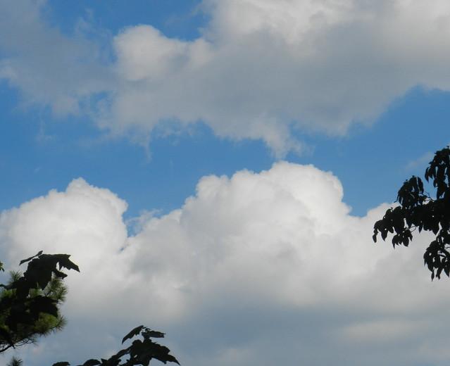 skywatchDSCN0191