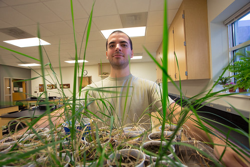 Sciences students contribute to NSF grant research