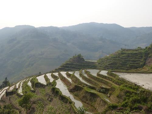 Yunnan13-Yuanyang 22 (1)