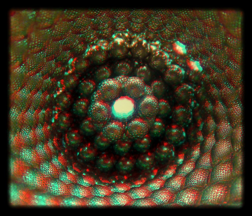 Tubular-Reflections-3a-in-3D