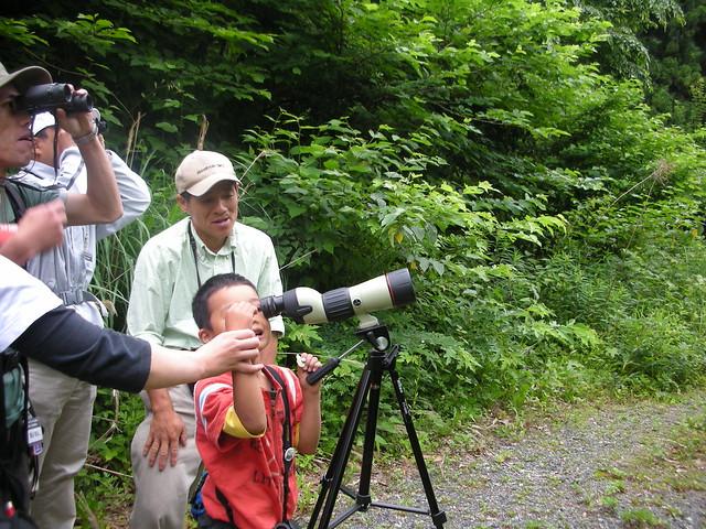 樹上の鳥を観察.フィールドスコープを覗きたい・・でもムズカシイ!