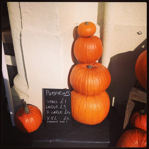 Pumpkins for sale by PhotoPuddle