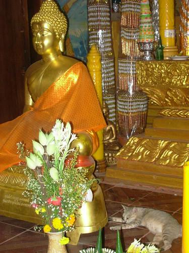 Pakse-Wat Luang (1)