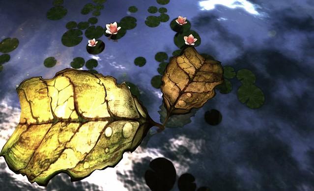 Water Lantern Festival (2)