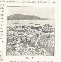 "British Library digitised image from page 223 of ""First Book of Physical Geography [With illustrations]"""