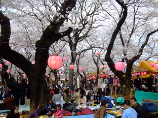 洗足池・桜山