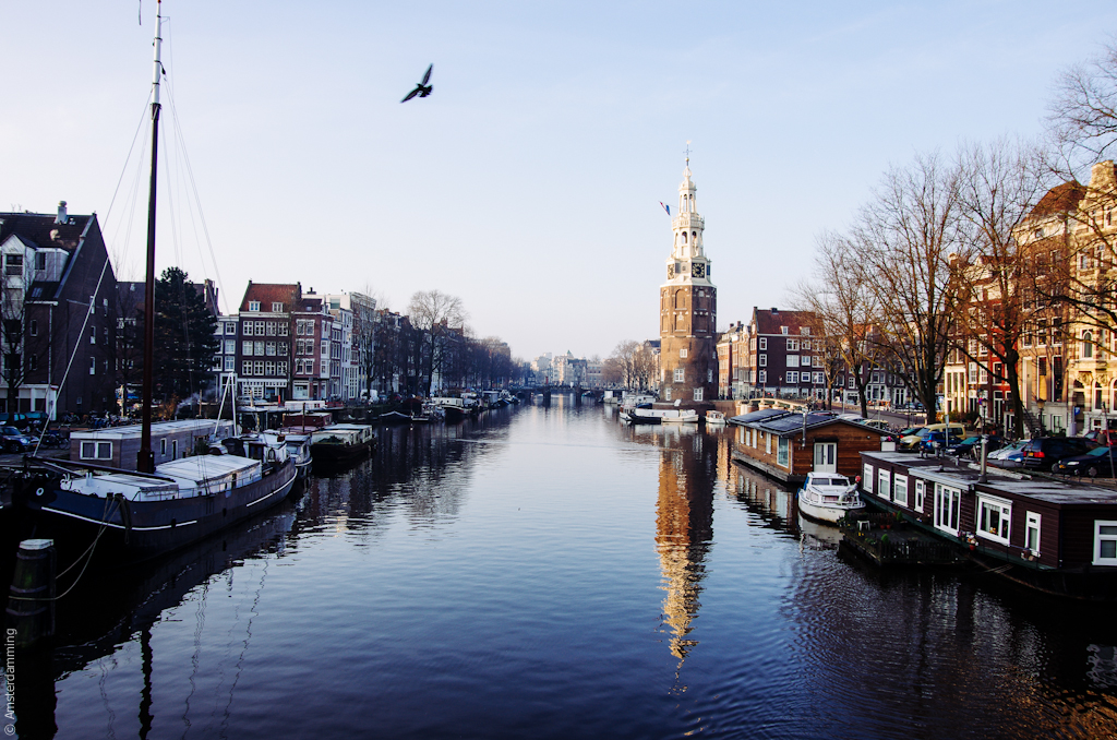 Amsterdam, Pure Morning