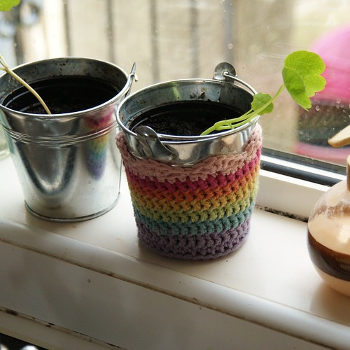improvised rainbow crochet plant pot cosy