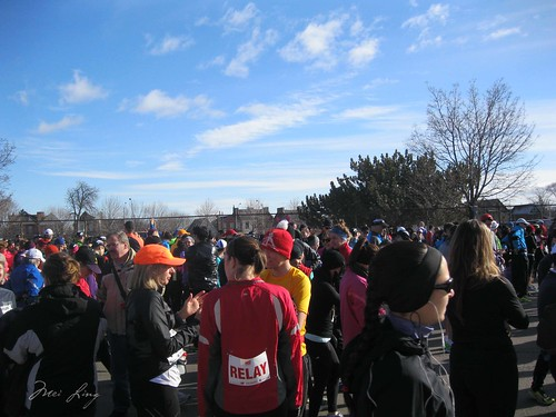 crowd of runners waiting for the start
