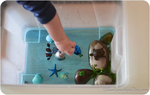 aquarium-26