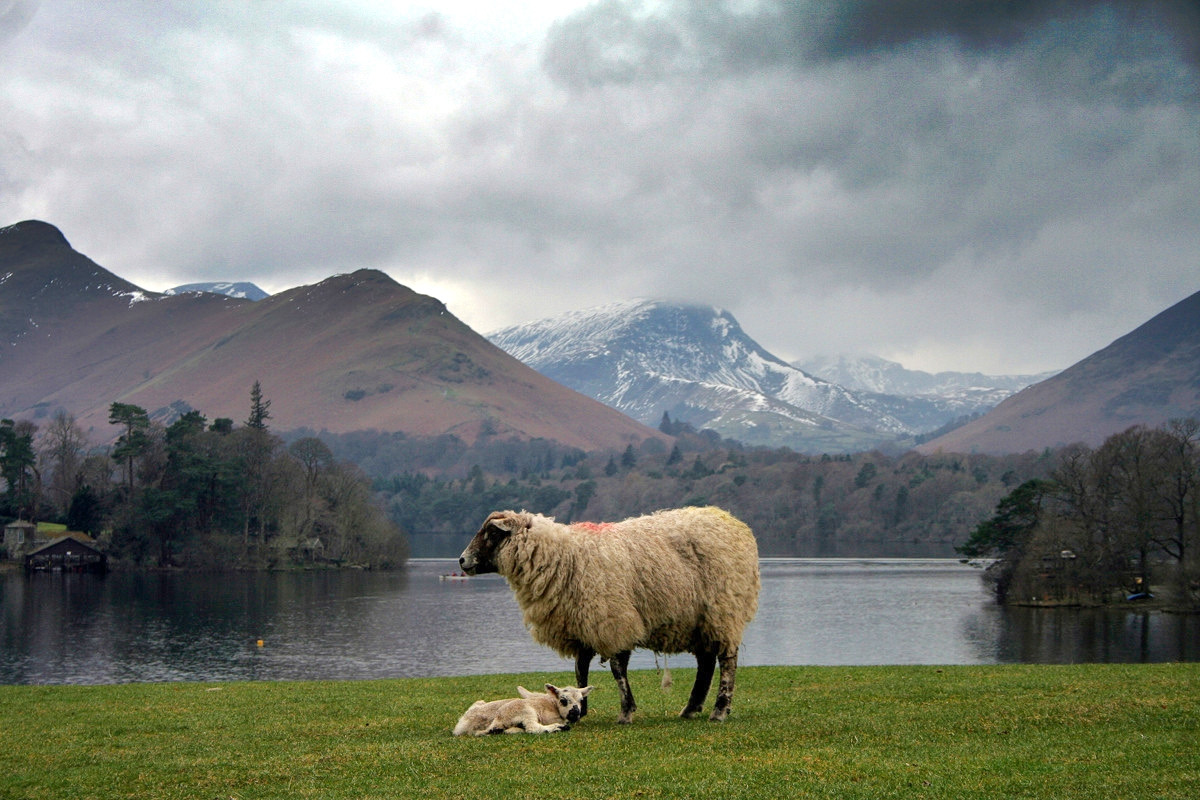 Lake District. Credit Jim Barter, flickr