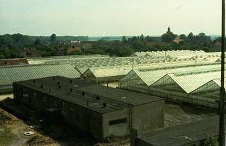 Greenhouses (2)