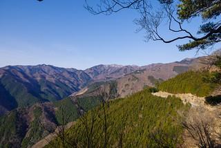右端から有間山、蕎麦粒山、日向沢ノ峰、川苔山