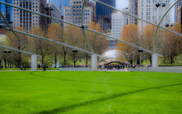 The Great Lawn and the Bean