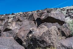 Rio Grande Petroglyphs