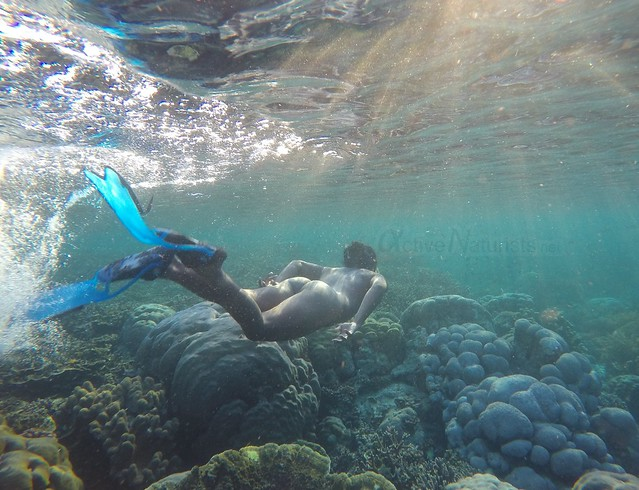 naturist 0007 Raja Ampat, Papua, Indonesia