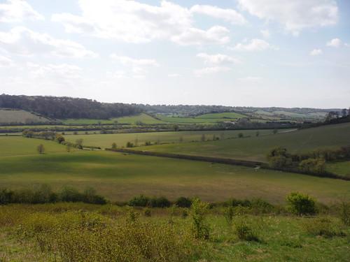 Saunderton, from Bradenham Beeches