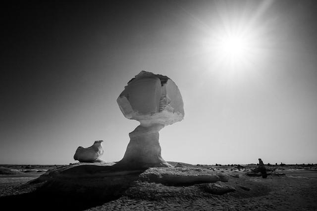 Chicken and mushroom - White Desert, Egypt
