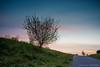 Sunset in Singlewell
