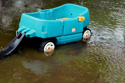 Flood 6