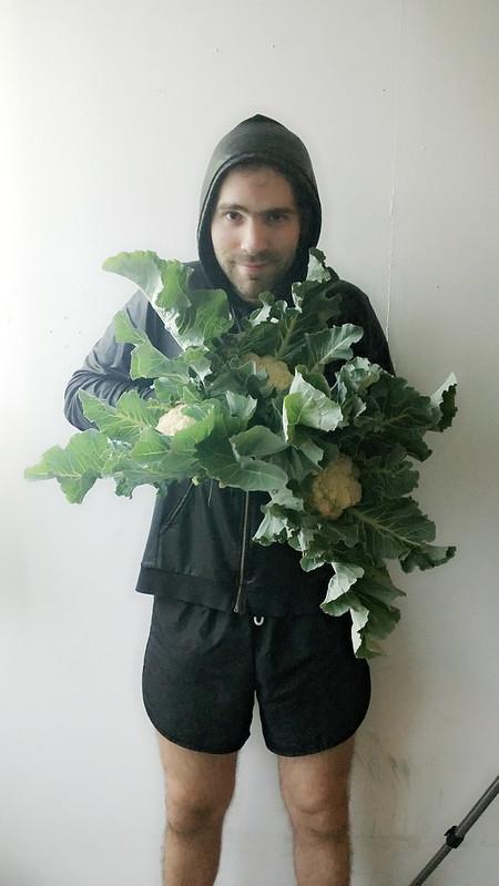 Cauliflower Harvest Camera360_2013_6_10_065358
