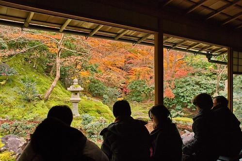 【写真】2012 紅葉 : 瑠璃光院/2020-06-07/IMGP7711