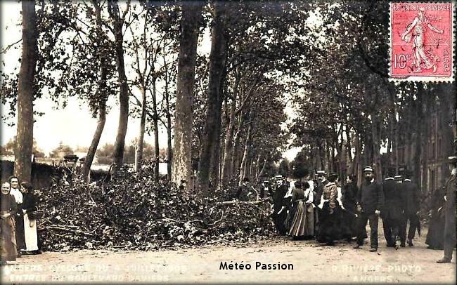 branches de platanes cassées par les bourrasques de vent lors de l'orage du 4 juillet 1905 à Angers météopassion