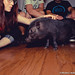 Marceline The MicroPig 7.13.13-24